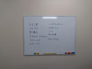 KIMG1321.JPG