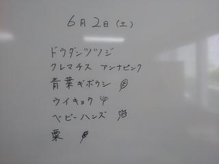 KIMG3833.JPG